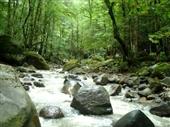 417 تورهای استانگردی مازندران در نوروز برپا می شود