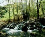 دره چلمیر