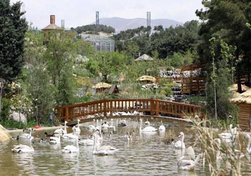 باغ-پرندگان-تهران7 باغ پرندگان تهران، بزرگترین باغ پرندگان در کشور