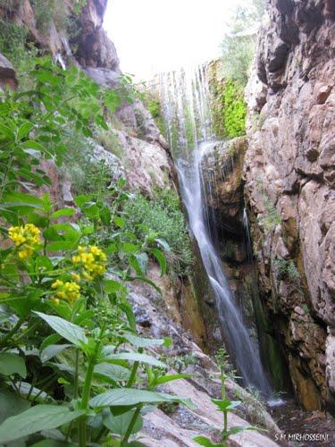 بنگان آبشار بنگان