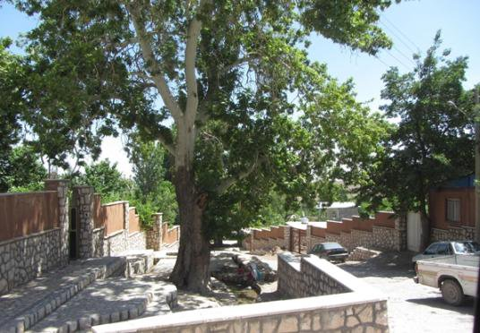 جرجافک روستای جرجافک