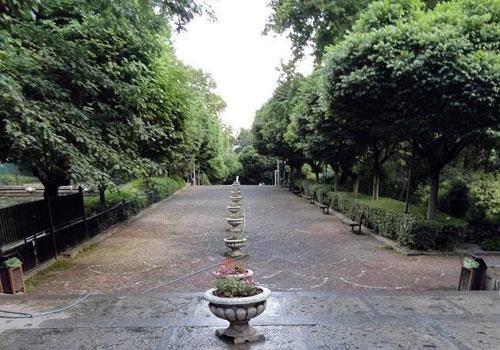 پارک-نیاوران4