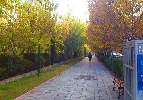 پارک هنرمندان 10 پارک معروف و دیدنی تهران