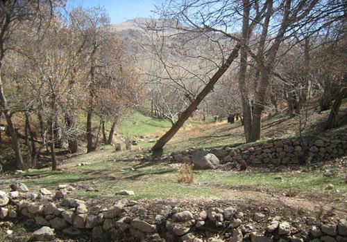 قلعه اسعدیه