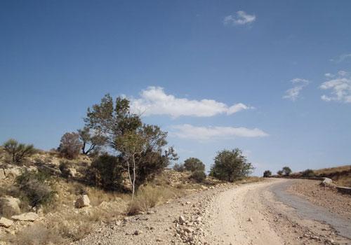 منطقه-حفاظت-شده-هرمود5 منطقه حفاظت شده هُرمود (هرمد)