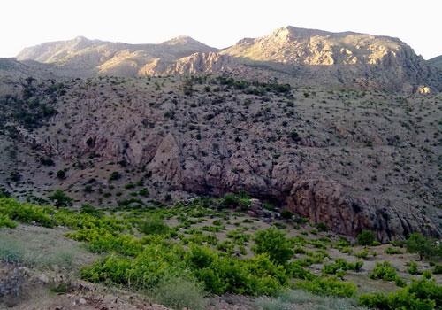 منطقه شکار ممنوع چاه نفت