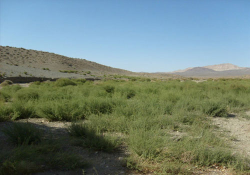 پارک-ملی-قطرویه2 پارک ملی قَطرویه