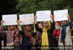 تجمع طرفداران محیط زیست در اعتراض به عدم خروج جاده از پارک ملی گلستان