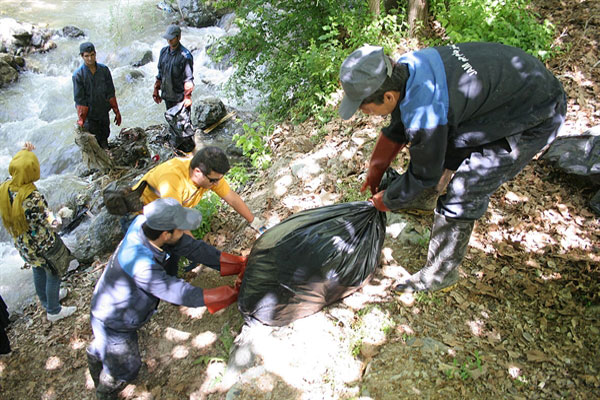 IMG09032597 درختان کاخ سعدآباد نجات بخشی و احیا شدند