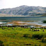 ۲۸۰ جاذبه طبیعی در استان کهگیلویه و بویراحمد وجود دارد
