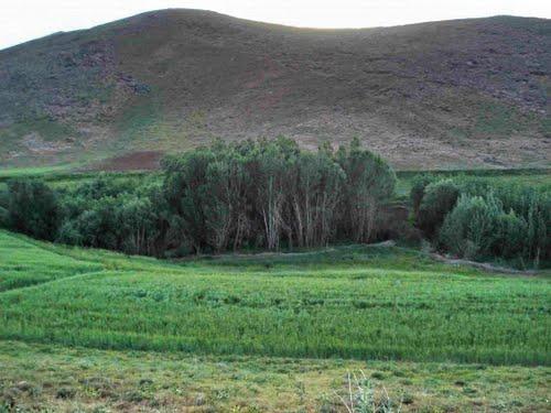 دلبران 3 شهر دلبران