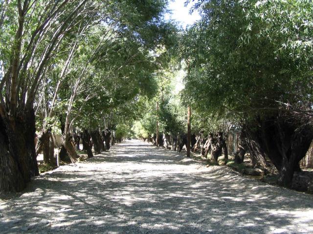 باغستان شهر باغستان