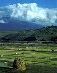 منطقه حفاظت شده شش رودبار