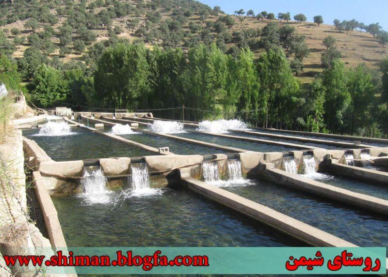 شیمن 4 روستای شیمن