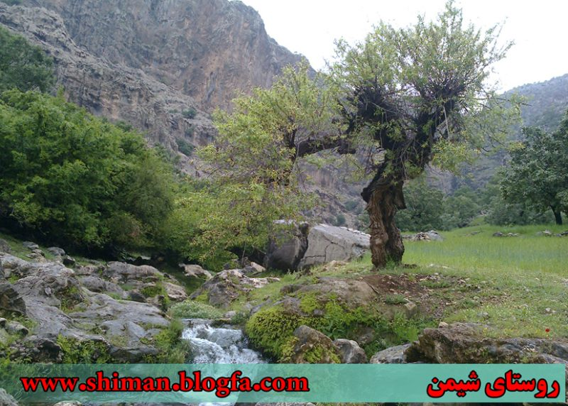 شیمن 7 روستای شیمن