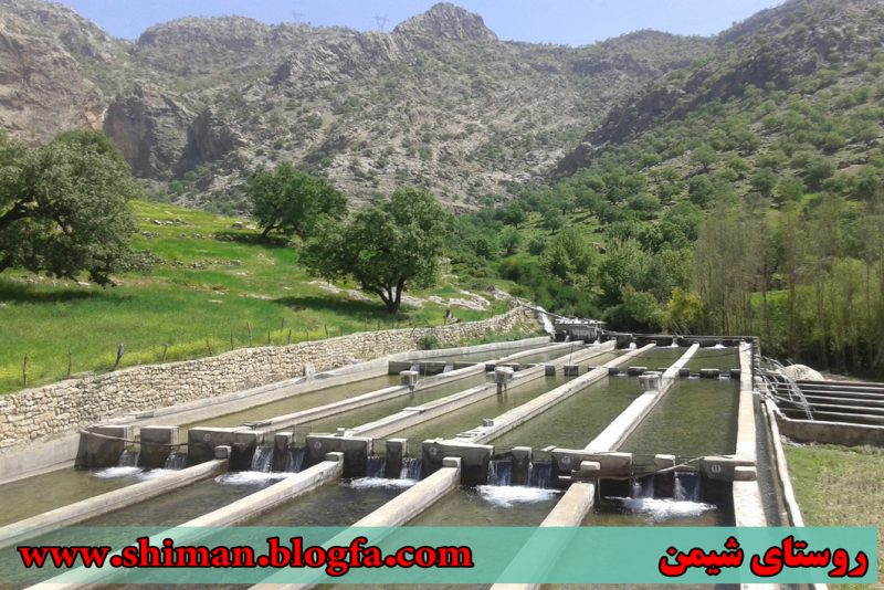 شیمن روستای شیمن