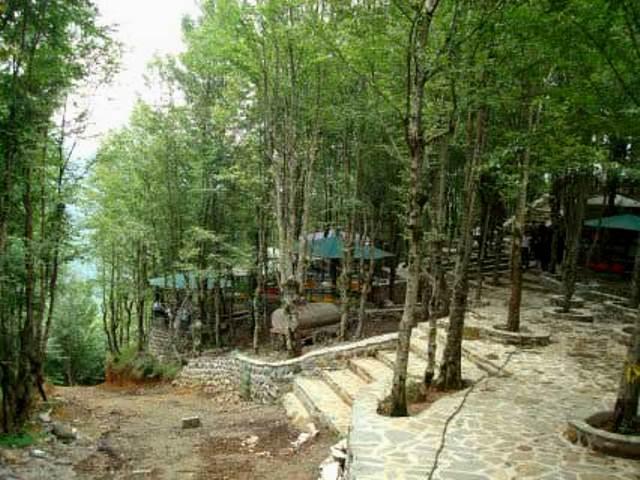صفارود 2 بوستان جنگلی صفارود
