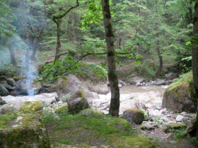 صفارود 6 بوستان جنگلی صفارود