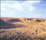 تپه شغالی پیشوا