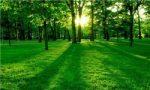 احداث بزرگترین پارک ویژه بانوان در شرق کشور