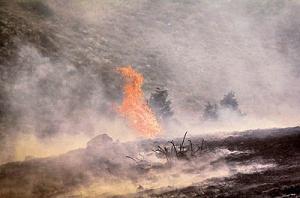 8a7813169164655ebe32dad719681a1b آتش در پارک ملی گلستان سرانجام خاموش شد!
