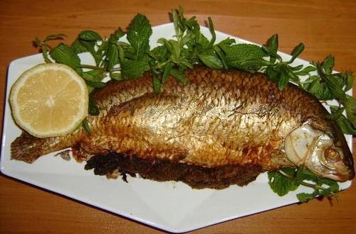 دوقوس ماهی