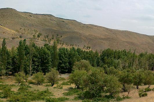 رودخانه دلبر