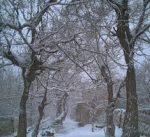 شهر نصرآباد