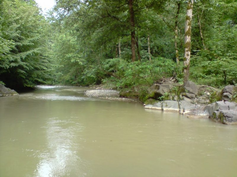 شفارود رودخانه شفارود