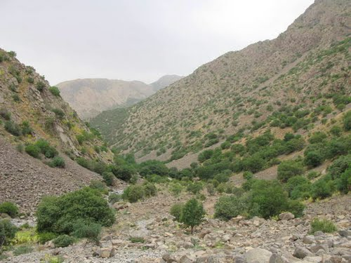فیروز آباد 1 شهر فیروزآباد لرستان