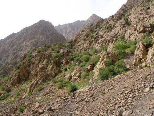 فیروز آباد 2 شهر فیروزآباد لرستان