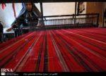 گلستان پایلوت تولید ابریشم و نوغان کشور می شود