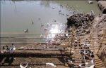 ۲ هزار اردک دیگر در راه سایت جهانی شوشتر؟!