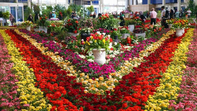 باغ گل محلات از جاهای دیدنی ایران 100 جاهای دیدنی ایران که قبل از مرگ باید دید