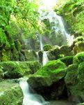 آبشار کوه سر
