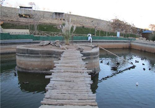 باغ پرندگان صدف6 باغ پرندگان صدف کرمانشاه