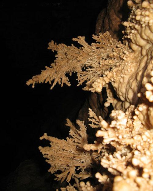 غار پریان ابیانه