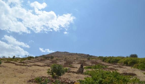 منطقه شکار ممنوع کوهستان داراب