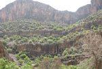 منطقه شکار ممنوع کوه سیاه