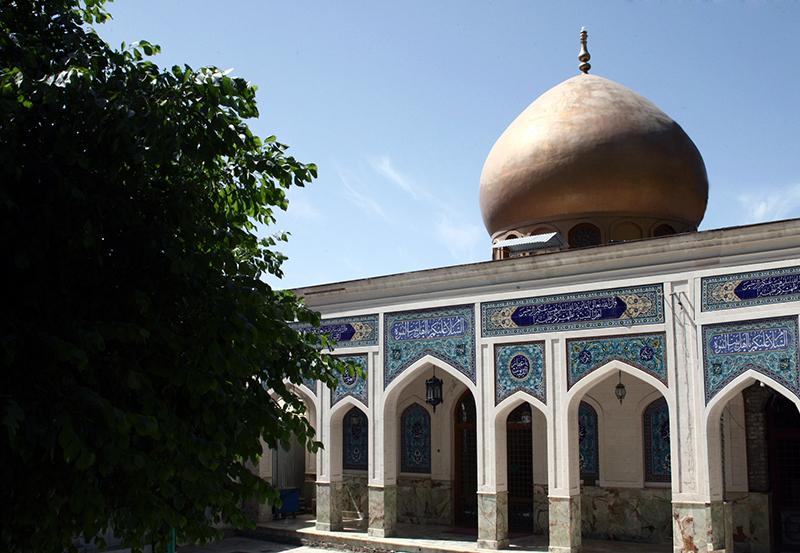 والی 1 امامزاده محمد والی (ع)
