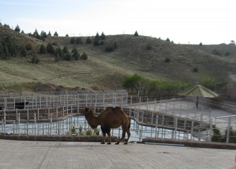 دهکده حیات طبیعت قزوین
