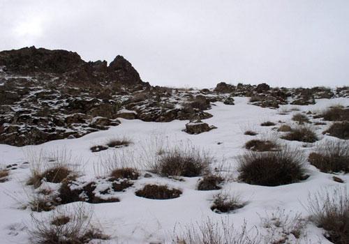 19 منطقه حفاظت شده پلنگ دره قم
