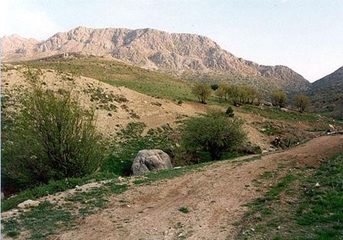 20 منطقه حفاظت شده پلنگ دره قم