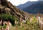 منطقه حفاظت شده پلنگ دره قم
