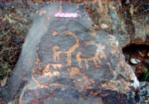 22 منطقه حفاظت شده پلنگ دره قم