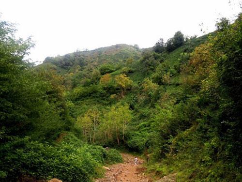 لیلاکوه رویایی ترین منطقه در شرق گیلان