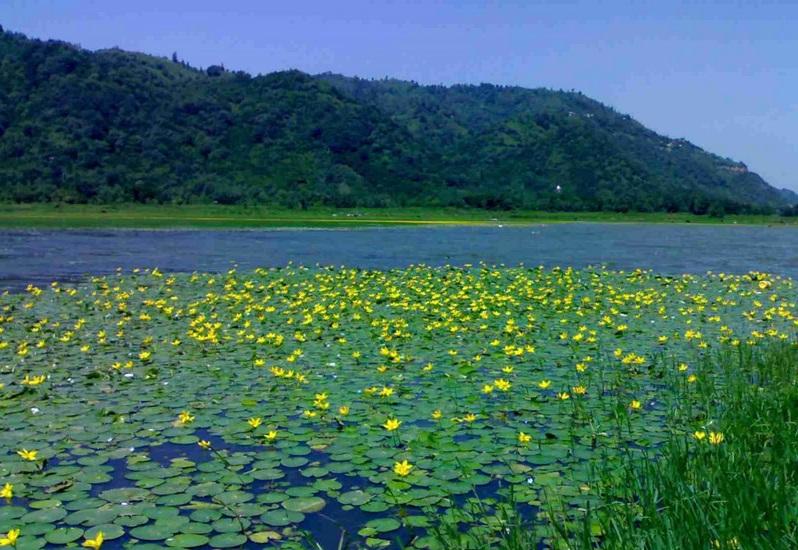 دریاچه کومله