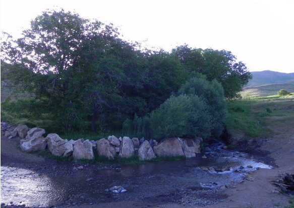 50 آبشار گینشاپسند