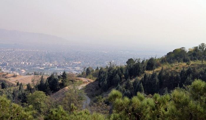 1357 پارک جنگلی یاس