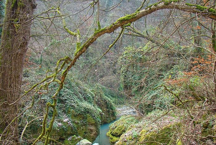 8 آبشار شفیع آباد (اوشرشره)